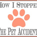 How to: Stop Pet Accidents!