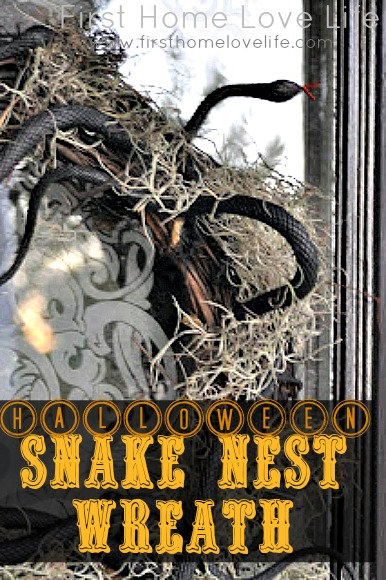How To: Snake Nest Wreath for Halloween