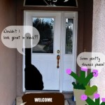 If front doors could talk…