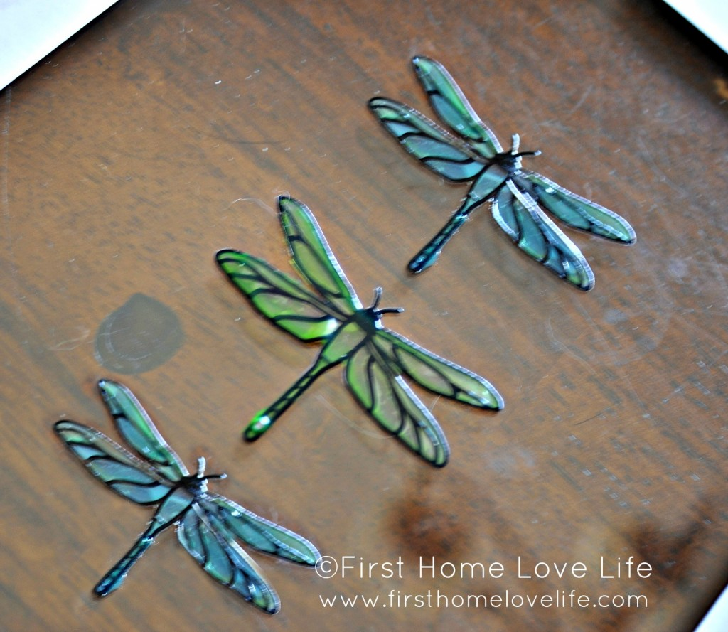 dragonflyglass