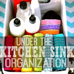 Kitchen Sink Organization