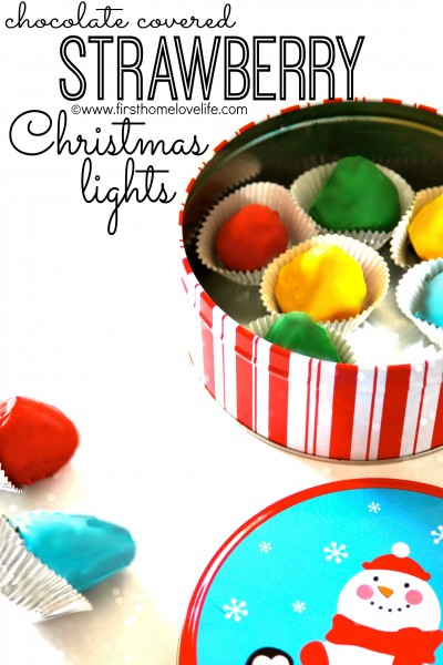 Chocolate Covered Strawberry Christmas Lights