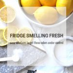 Stinky fridge? Here's some easy and inexpensive solutions to keep your fridge smelling fresh! via firsthomelovelife.com