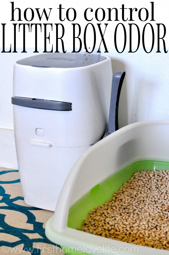 No more litter box odor with this simple system!