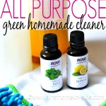 Green Cleaning | Lemon-Basil All Purpose Cleaner