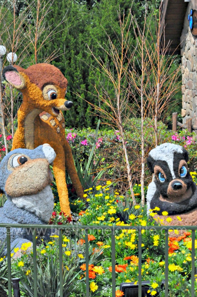 There's so much to see and do at the Epcot Flower and Garden Festival! From butterfly gardens, to fabulous food, and entertainment-It's a magical experience not to be missed! #travel #disneyworld #epcot #disney
