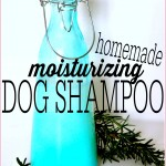 Homemade Dog Shampoo