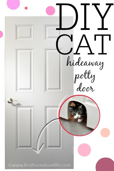 DIY Cat Potty Door