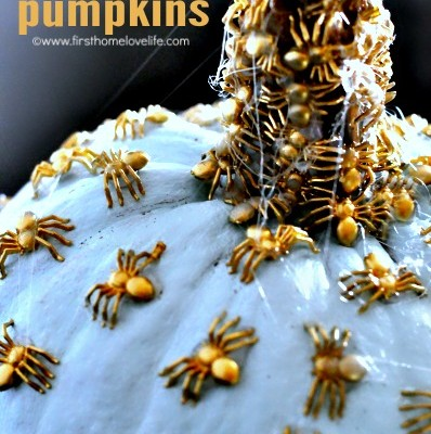 Creepy Crawly Chic Pumpkins