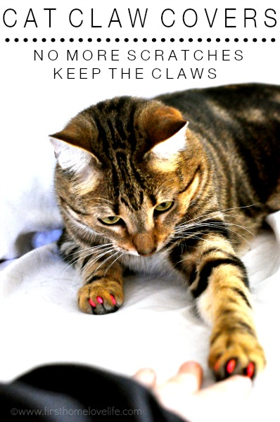 soft claws cat nail covers via www.firsthomelovelife.com