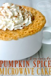 Pumpkin Spice Cake Made in Microwave via www.firsthomelovelife.com